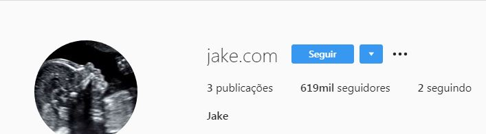 Perfil de Jake Lee