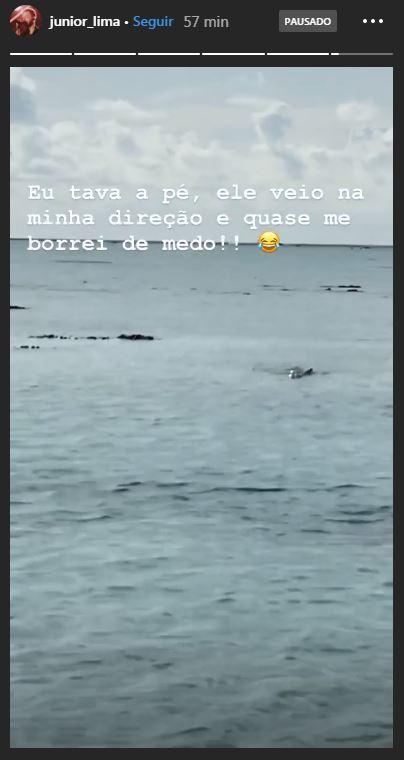 Junior Lima encontra tubarão em viagem de férias